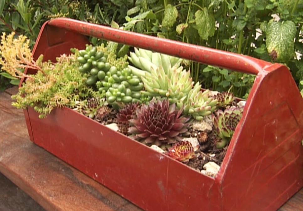 13 Unusual and Upcycled – Container Gardens | NC Flower Pots